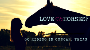 Love Horses? Go Riding in Concan, Texas